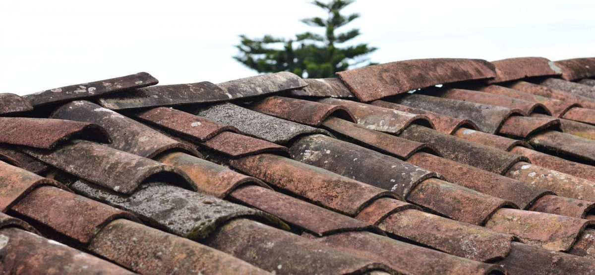 When Should I replace My Shingles?